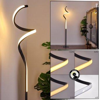 Pitasch Lampada da terra LED Nero, 1-Luce