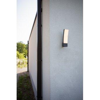 Lutec Kira Applique da esterno LED Antracite, 1-Luce