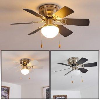 Trillo ventilatore da soffitto Nichel opaco, Grigio, Bianco, 1-Luce