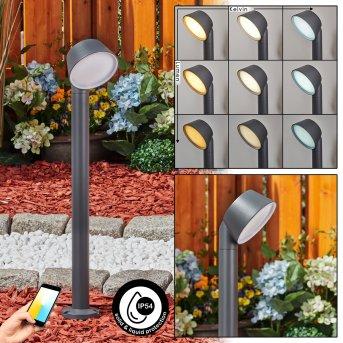 Moroni Lampioncino Segnapasso LED Antracite, 1-Luce
