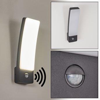 Maseru Applique da esterno LED Antracite, 1-Luce, Sensori di movimento