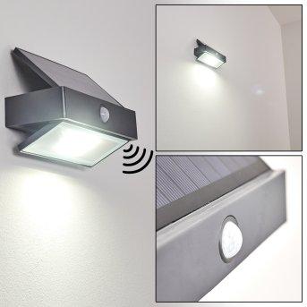 Wiborg Applique da esterno LED Antracite, 1-Luce, Sensori di movimento