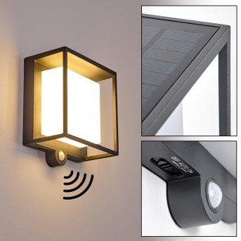 Lansing Applique da esterno LED Antracite, 1-Luce, Sensori di movimento