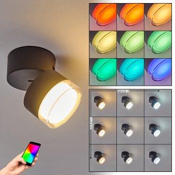 Papagayos Plafoniera da esterno LED Antracite, Bianco, 1-Luce, Cambia colore