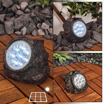 Sameo Lampade solari LED Marrone, 8-Luci