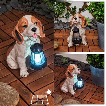 Sofie Lampada solare LED Nero, Bianco, Arancione, 1-Luce