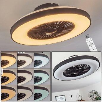 Qualiano ventilatore da soffitto LED Nero, Bianco, 1-Luce, Telecomando