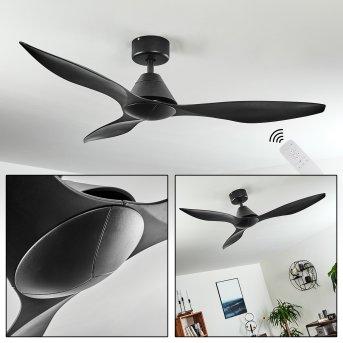 Bacugno ventilatore da soffitto Nero, Telecomando