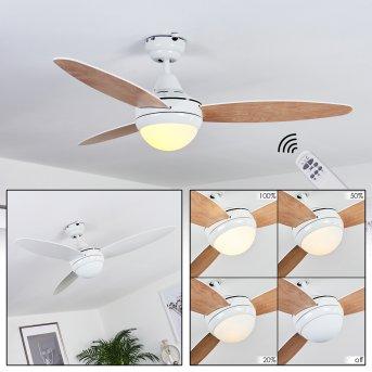 Beltiglio ventilatore da soffitto Bianco, Legno scuro, 2-Luci, Telecomando