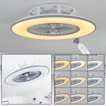 Marmorta ventilatore da soffitto LED Grigio, Bianco, 1-Luce, Telecomando