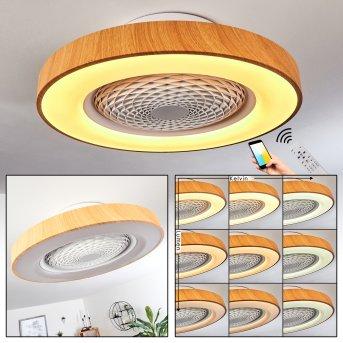 Penon ventilatore da soffitto LED Bianco, 1-Luce, Telecomando