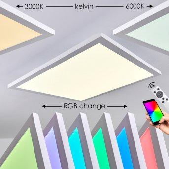 Bankura Plafoniera LED Bianco, 1-Luce, Telecomando, Cambia colore