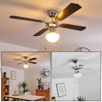 Valletta ventilatore da soffitto Cromo, Nero, Bianco, 1-Luce