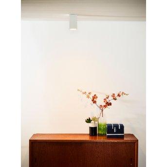 Faretto da soffitto Lucide DELTO LED Bianco, 1-Luce