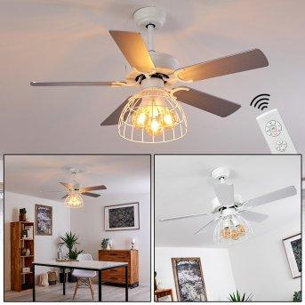 Izola ventilatore da soffitto Grigio, Bianco, 3-Luci, Telecomando