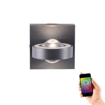 Applique Paul Neuhaus Q-MIA LED Antracite, 2-Luci, Telecomando
