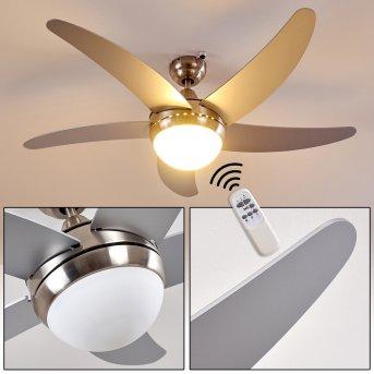 Ventilatori a soffitto Morino Nichel opaco, Argento, 2-Luci, Telecomando
