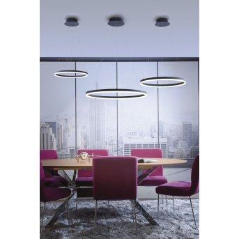 Paul Neuhaus TITUS Lampada a Sospensione LED Antracite, 1-Luce