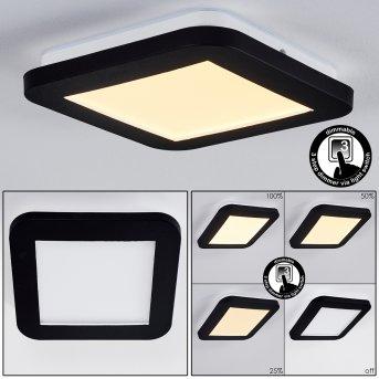 Siguna Plafoniera LED Bianco, 1-Luce