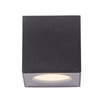 Paul Neuhaus ORANGE Applique LED Antracite, 2-Luci