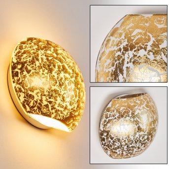 Concha Applique Bianco, 1-Luce